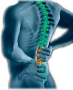 Causes and Symptoms of Back Pain